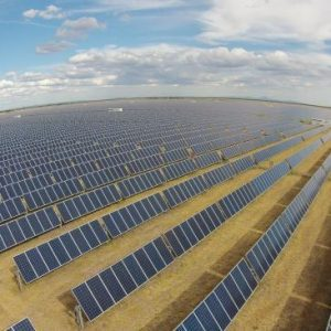 Solar Farm burns money